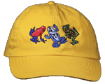 Dart Frog Fun Youth Embroidered Cap