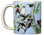 Canyon Birds Ceramic Mug