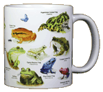 Frogs of the World Ceramic Mug - Back