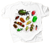 Vintage Insects Youth Tshirt