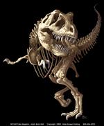 T-Rex Skeleton Adult T-shirt