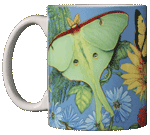Butterfly Spectrum Ceramic Mug