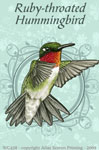"Ruby Throated Hummer 2"" X 3"" Magnet"