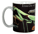 Insects of NA Ceramic Mug