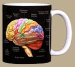 Brain Ceramic Mug - Back