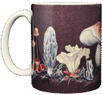 Mushrooms Ceramic Mug