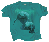 Manatee Duet Youth T-shirt