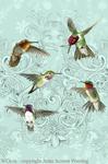 "Hummingbird Lace 2"" X 3"" Magnet"