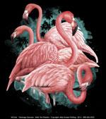 Flamingo Dancers Ladies Scoop Neck Tee