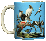 Florida Birds Ceramic Mug