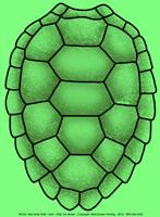 Sea Turtle Shell Youth T-shirt