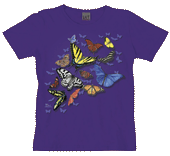 Butterfly Wonder Ladies Scoop Neck T