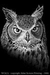 """Discharge Owl 2"""" X 3"""" Magnet"""