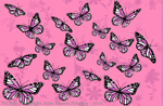 "Good & Plenty Butterflies 2"" X 3"" Magnet"