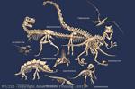 "Dinosaur Bones 2"" X 3"" Magnet"