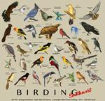 Birding Southwest Adult T-shirt