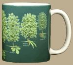 Trees of North America Ceramic Mug - Back
