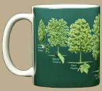 Trees of North America Ceramic Mug