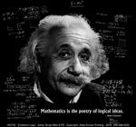 Einstein's Logic Adult T-shirt