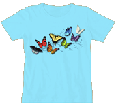 Butterfly Fancy Ladies Scoop-Neck T-shirt