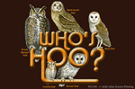 "Who's Hoo Owls 2"" X 3"" Magnet"