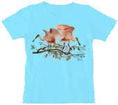 Roseate Spoonbills Ladies Scoop Neck Tee