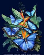 Butterfly Paradise Ladies Scoop Neck Tee
