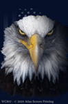 "American Eagle 2"" X 3"" Magnet"