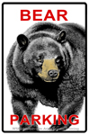 "Bear Parking 2"" X 3"" Magnet"