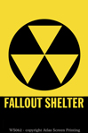 """Fallout Shelter 2"" X 3"" Magnet"""