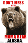 "Don't Mess With Mama Bear 2"" X 3"" Magnet"
