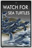 Watch For Sea Turtles Sign