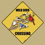 Wild Bird Crossing
