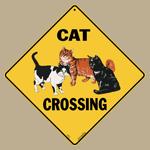Cat Crossing