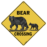 Bear Family Crossing