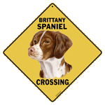 Brittany Spaniel Crossing